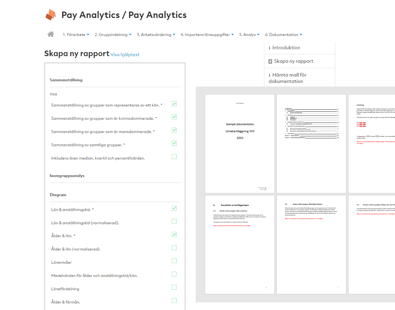 Pay Analytics Rapport